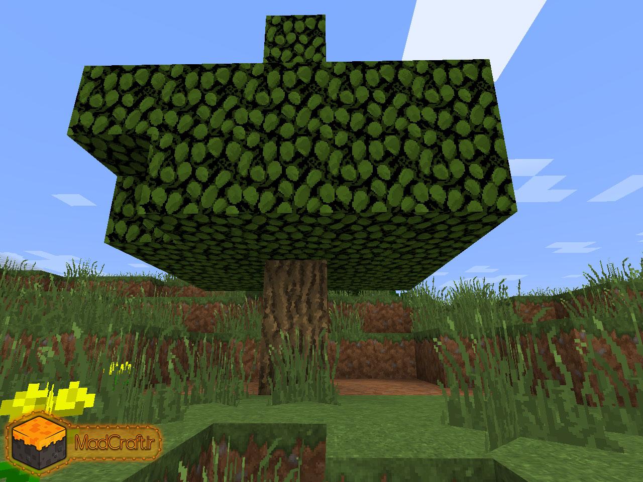 اینو ببینید (یه درخت معمولیه)